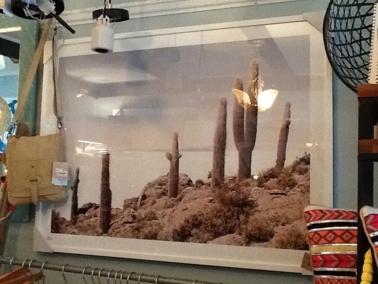Cactus View Wall Art
