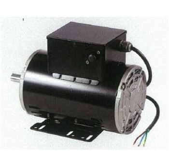 Looking for Electric Motor for Sale