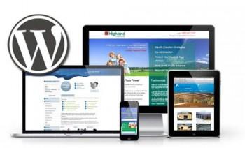 WordPress/Shopify/PHP/CMS Based Website