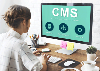 What is CMS Website Design is All About?