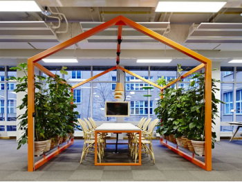 Office Plants  Inscape Indoor Plant Hire