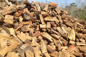 Bulk Firewood Sale at Affordable Price