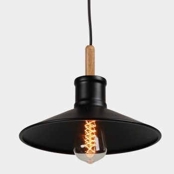 Shop Pendant Lights from Wholesale Light