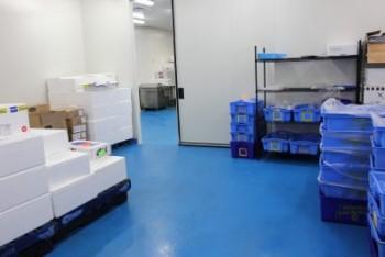 The Best Epoxy Flooring NSW - Ironbark flooring