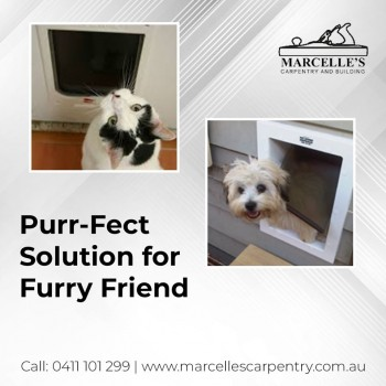 Get a Customised Door for Your Pet with Our Cat Enclosures