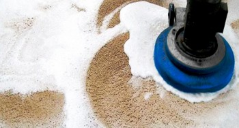 Get professional carpet cleaning services in Brighton