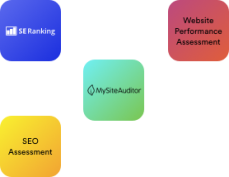 Website Auditing Services