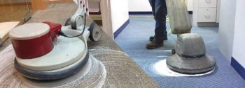 Carpet Cleaning Homebush