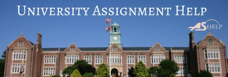 University Assig ...