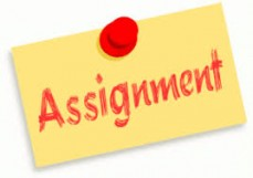 Avail Academic Assignment Writing Help O
