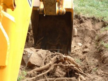 Earthworks & Excavation Landscaping Serv