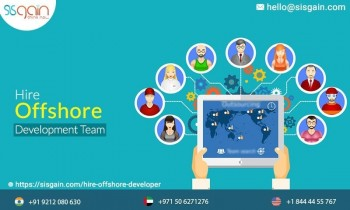 Hire premium offshore application programmer