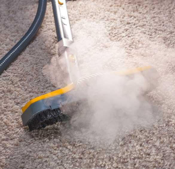 Same Day Carpet Cleaning Wynnum
