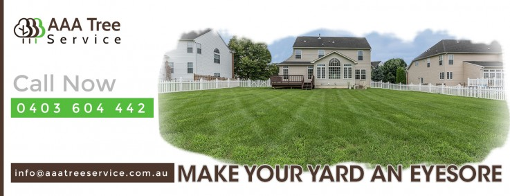 Maintain your landscape exterior to add value with AAA Tree Service