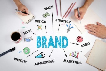 Establishment Of Brand Identity