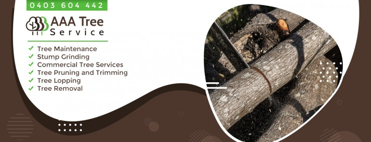 Any type of commercial tree services are provided by AAA Tree Service