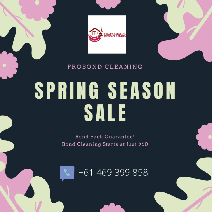 ProBnd Cleaning Spring Season Sale.