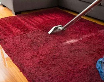 Professional Carpet Cleaners Bentleigh