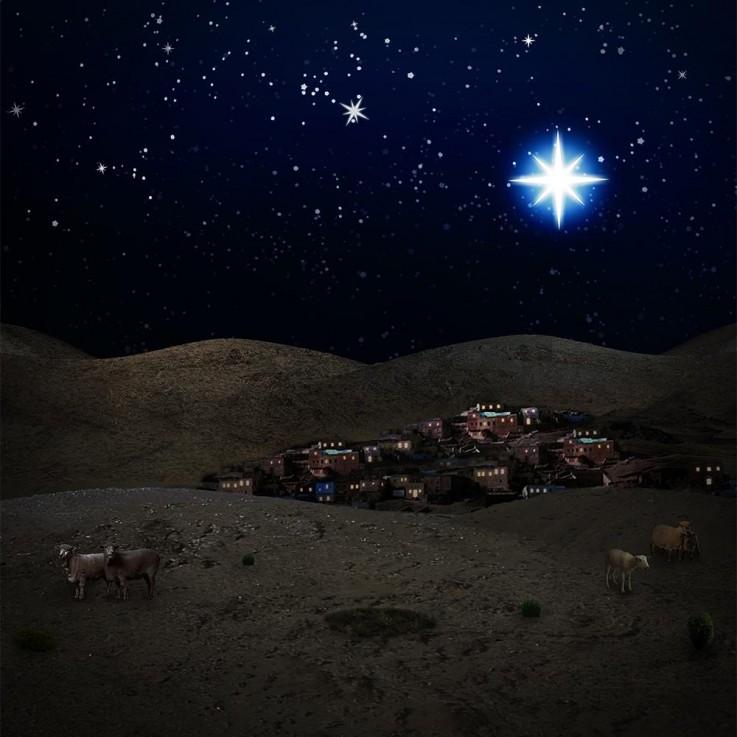 Christmas Backdr ...