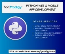 Hire python web  ...