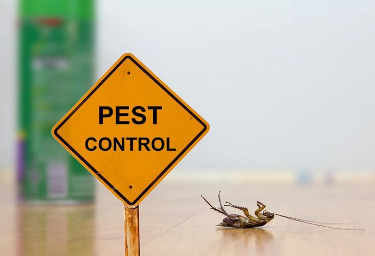 Pest Control Parkes