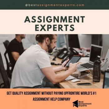 Best Assignment Experts