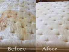 Best Mattress Cleaning Hobart