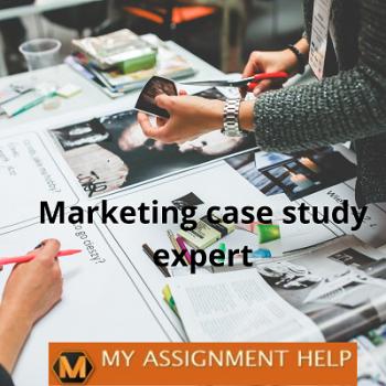 Marketing case study expert