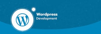 Hire Top Rated Wordpress Developers