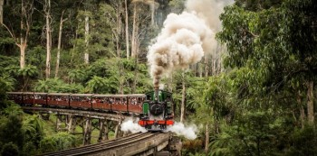 PUFFING BILLY SPECIAL OFFER – 20% off Ex