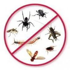 Squeak Pest Cont ...