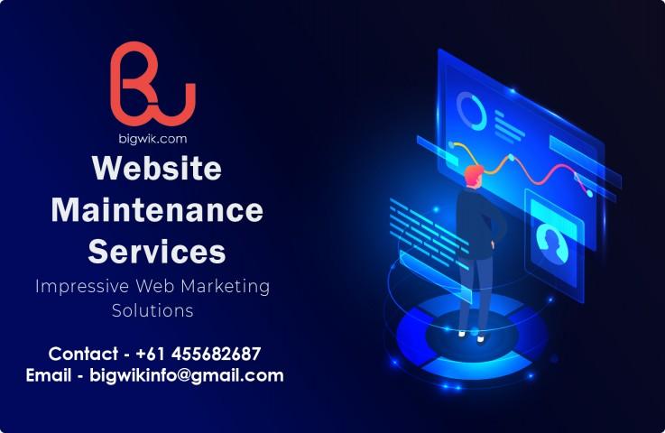 Website Maintena ...