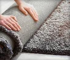 Carpet Cleaning Bardon