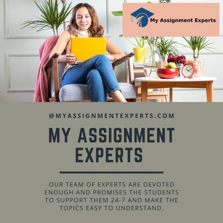 My assignment Expert
