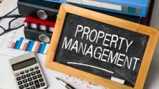 Junior Property manager