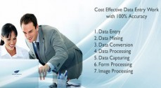 Data Entry Professional