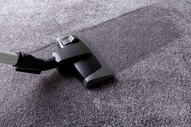 Professional Carpet Cleaning Services Near You