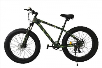 FAT Electric Bikes to Ride with Fun