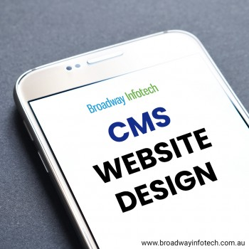 Brief Description About CMS Website