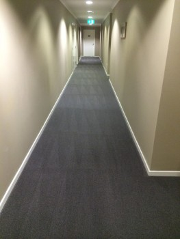 Commercial Carpet cleaning Logan and Gold Coast