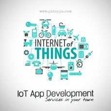 IoT app development services in your tow