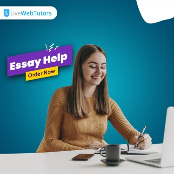 Get the Essay of Your Dreams with Essay