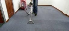 speedy carpet cl ...
