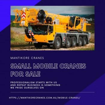 Small Mobile Cranes For Sale