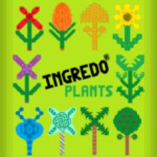 INGREDO PLANTS