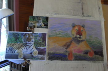 Soft Pastel Painting Tutorials
