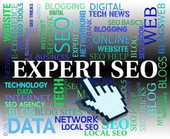 Professional SEO Services at Affordable