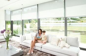 Big winter sale offer roman blinds