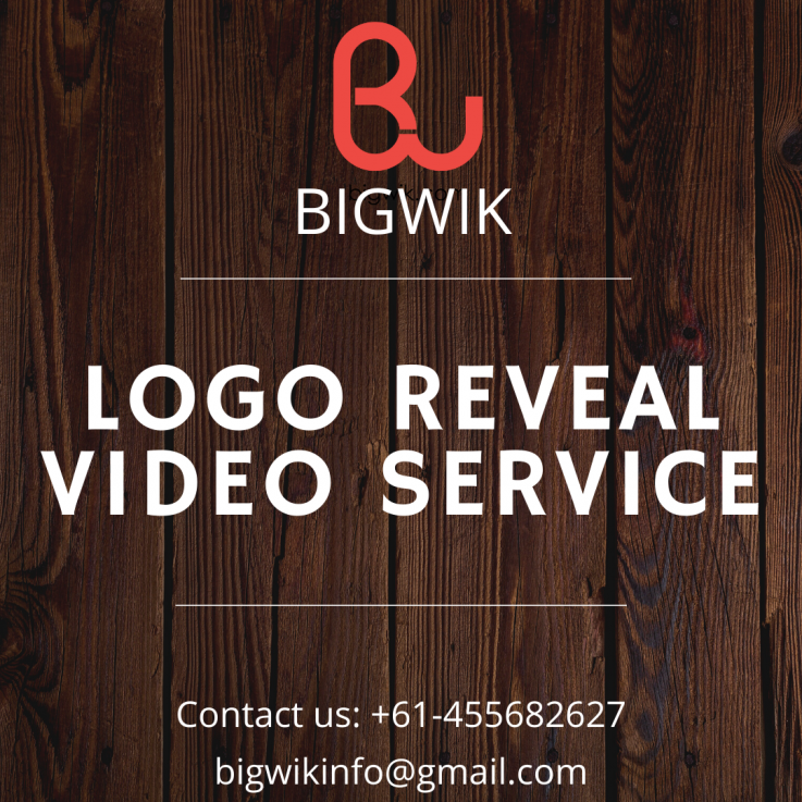 Logo Reveal Animation Services | Best Logo Reveal Services