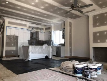 Painters in Perth | Delicate Painting